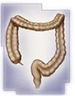 Unexpected Benefits of a Colonoscopy