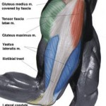 What is a Tensor Fasciae Latae and Why does Mine Hurt?
