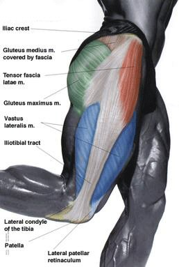 What is a Tensor Fasciae Latae and Why does Mine Hurt? - A