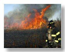 Staten Island Brush Fire
