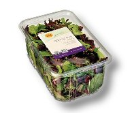 Spring Mix Container