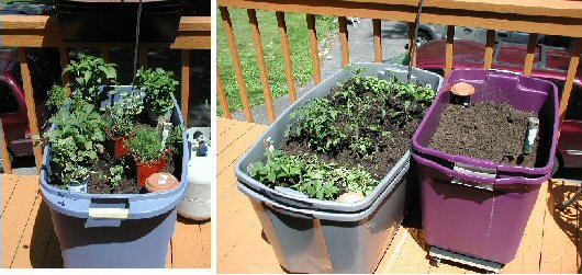 3 containers in various stages