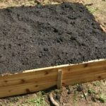 Creating a Raised Bed Vegetable Garden