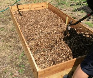 Layer of Wood Chips