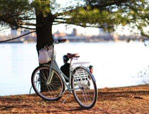 Biking for Knee Rehab