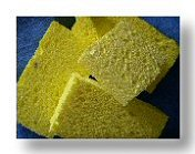 Disinfect Kitchen Sponge