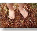 Something I learned about Bokashi Soil